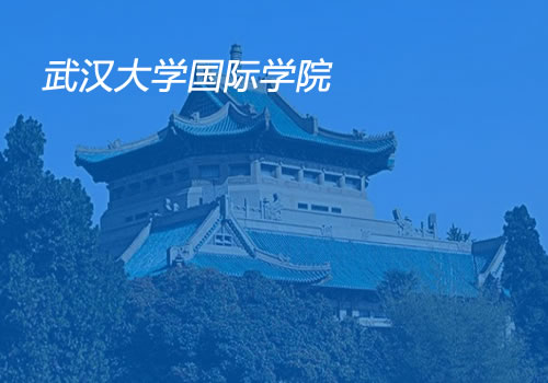武汉大学国际教育学院-武汉网站设计