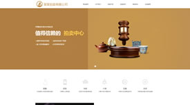 武汉做网站|典当|拍卖公司案例
