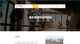 六安丽泰商贸有限公司案例-武汉专业设计网站的公司
