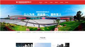 河源华盛电子有限公司案例-武汉网站开发