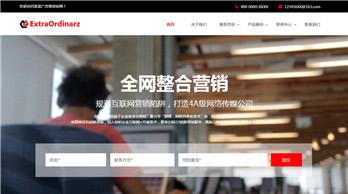 湖南汉思达网络科技有限公司案例-武汉专业网站设计